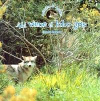 Ahi viene el lobo gris (Animales de America)