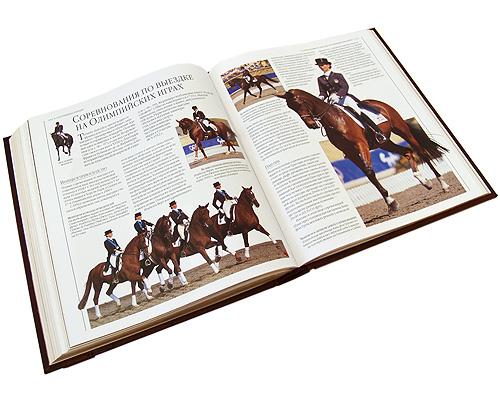Лошади (подарочное издание)