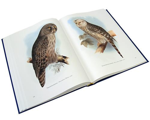 Птицы Европы (эксклюзивное издание)