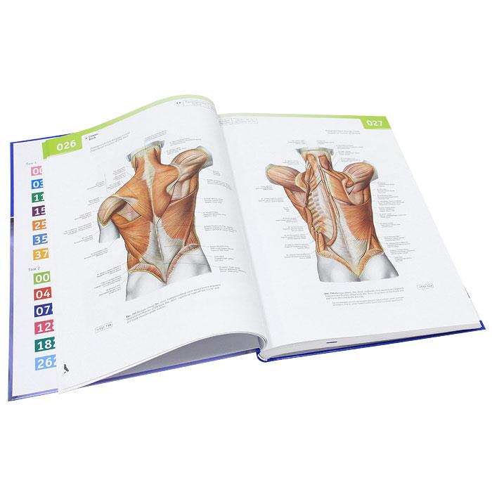 Sobotta. Атлас анатомии человека. В 2 томах. Том 2. Туловище. Внутренние органы. Нижняя конечность