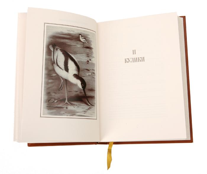 Охотничьи и Промысловые Птицы Европейской России и Кавказа. Подарочное издание (комплект из 3 книг)