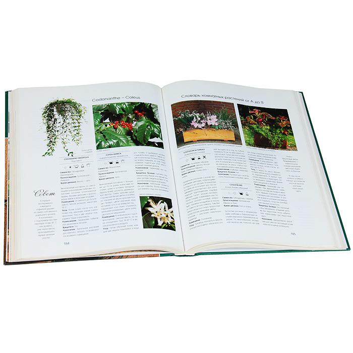 1000 прекрасных растений в вашем доме