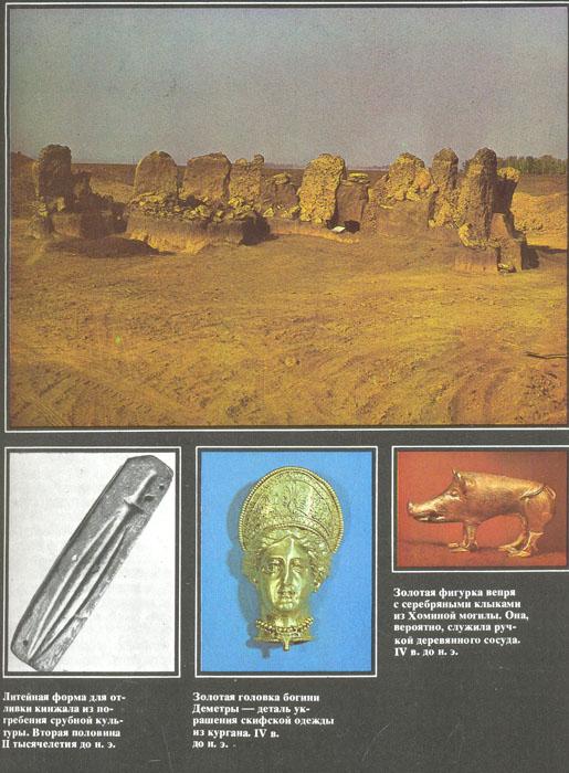 Наука и человечество. 1980