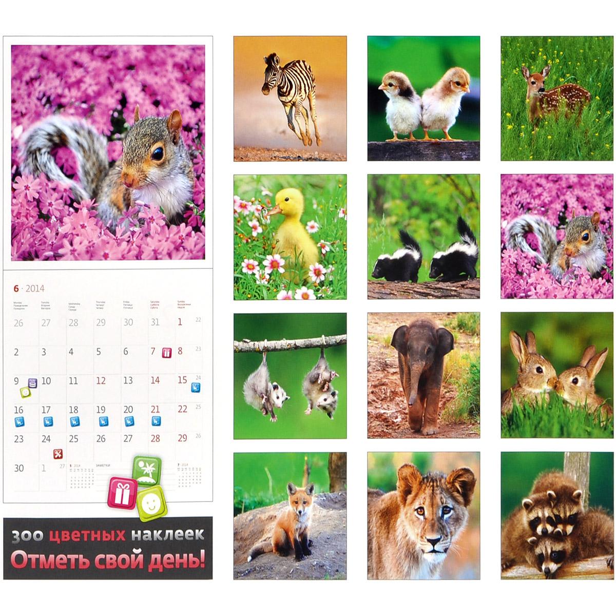 Календарь 2014 (на спирали). Забавные малыши.