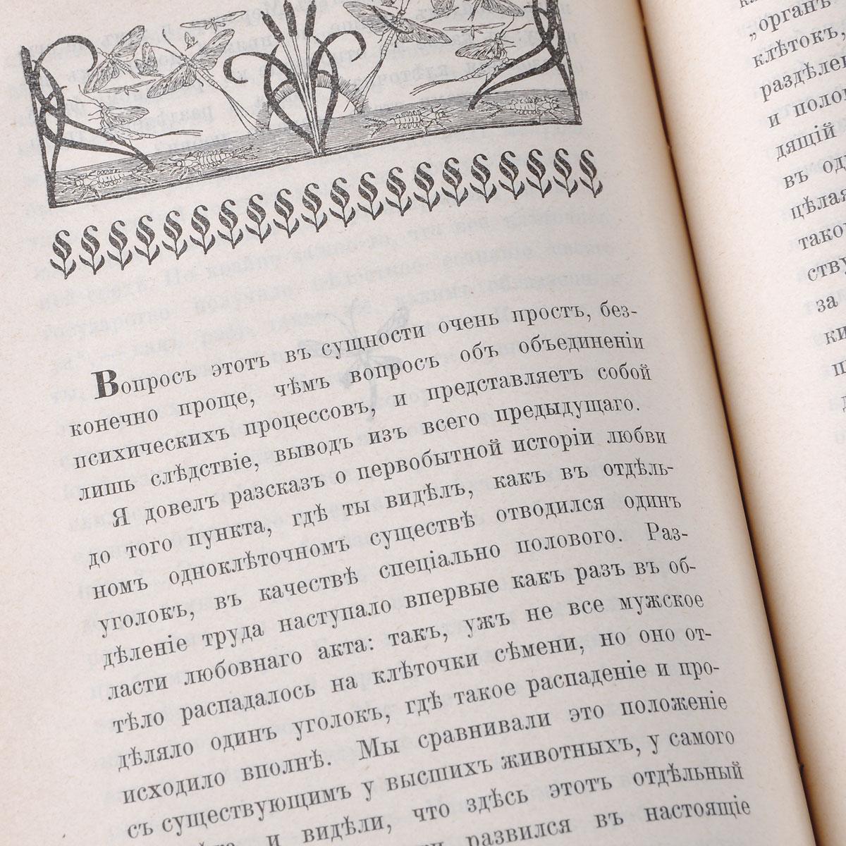 Любовь в природе. Популярная история возникновения и развития любви в животом мире