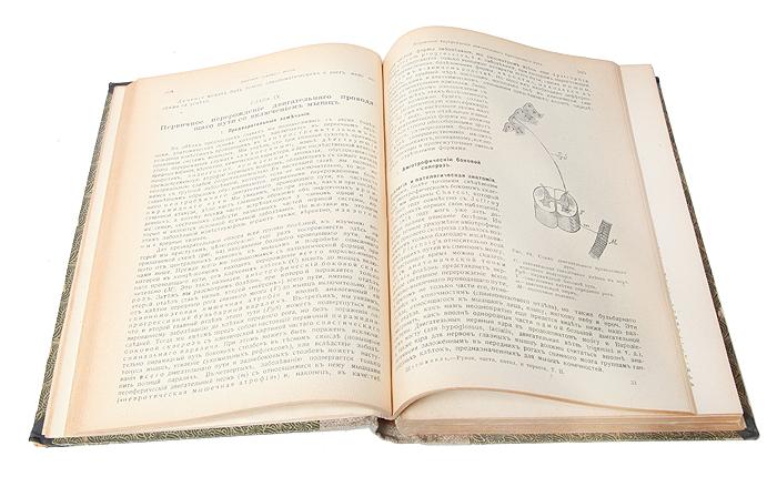 Учебник частной патологии и терапии внутренних болезней. Том 2