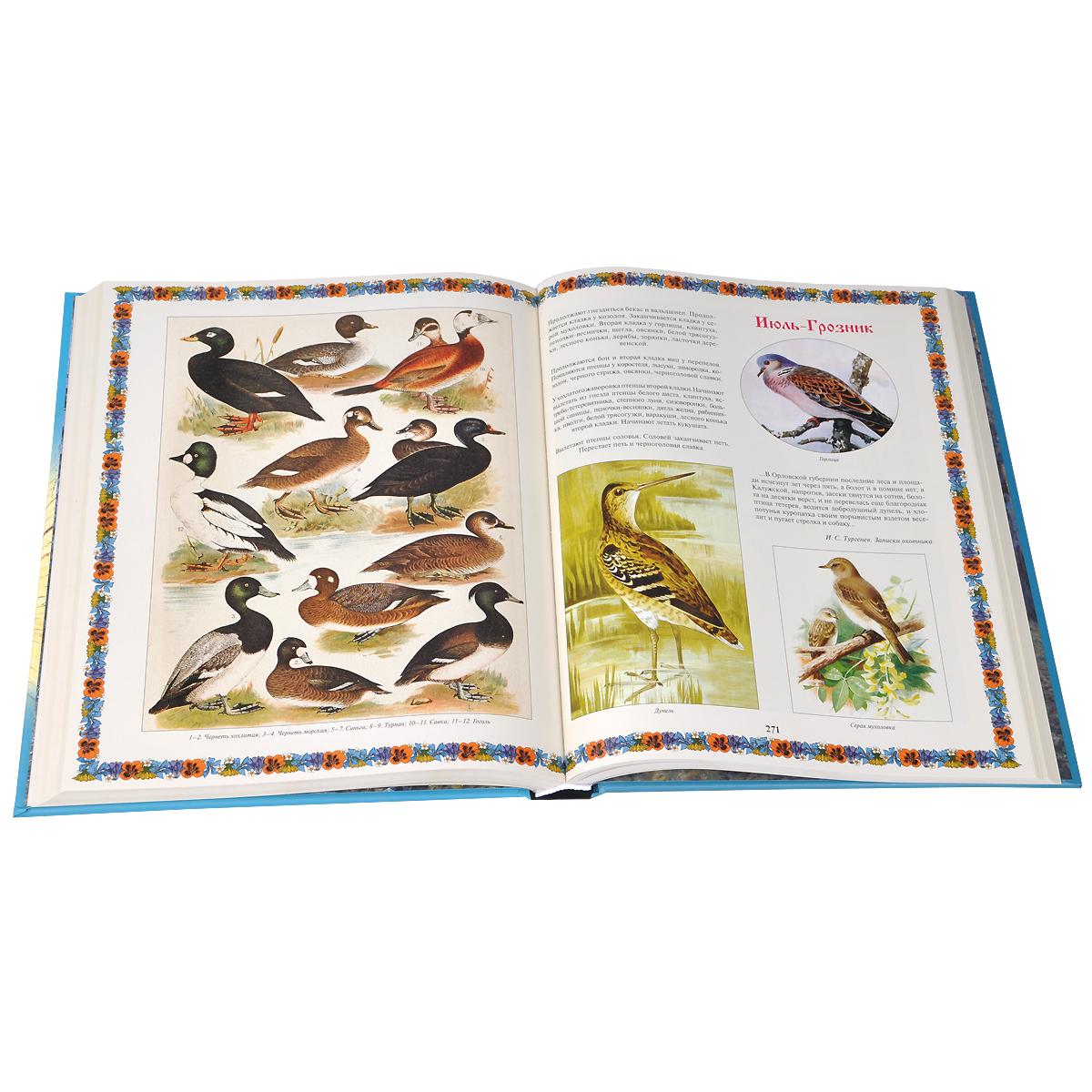 Иллюстрированный календарь русской природы (подарочное издание)