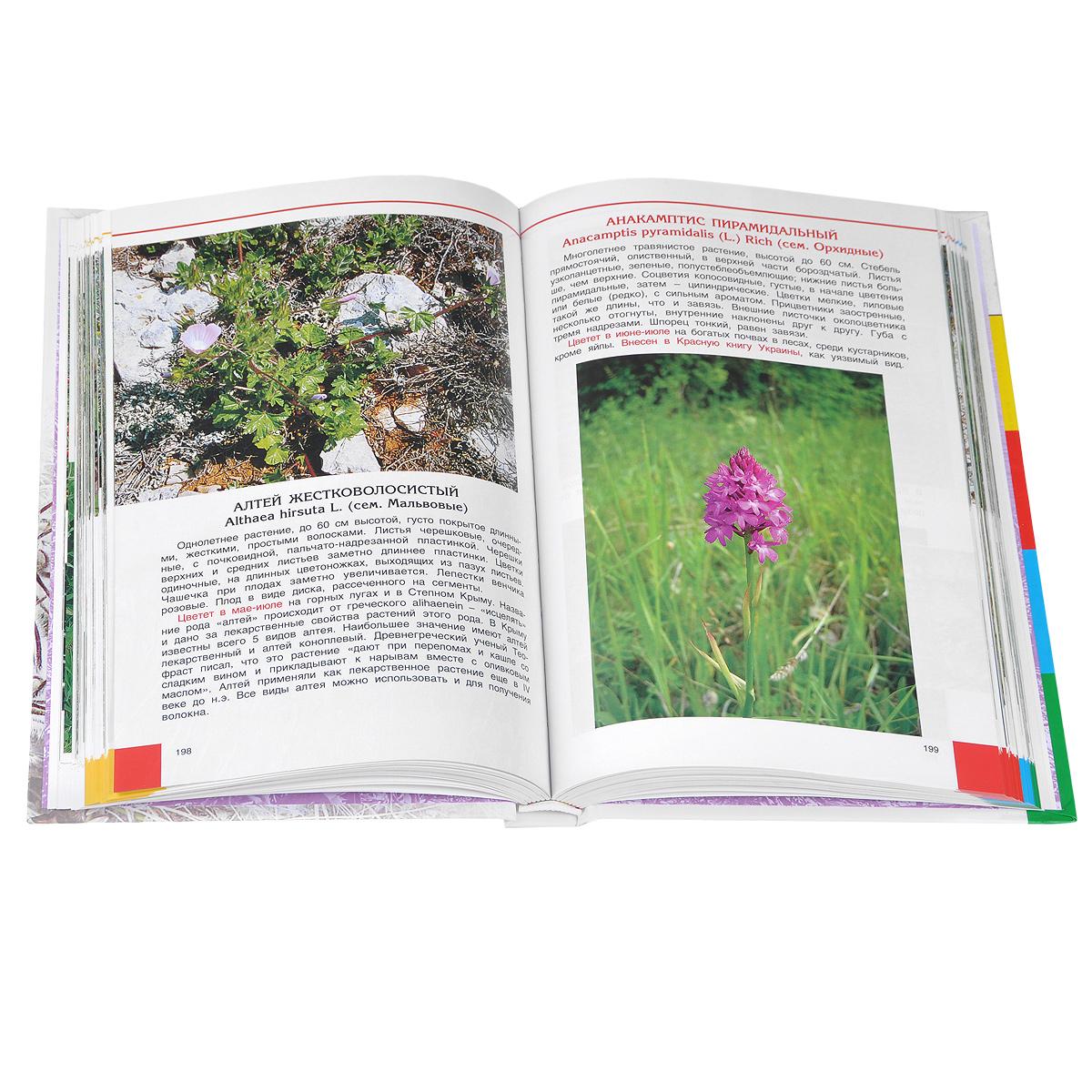 Цветной атлас растений Крыма. Книга 1