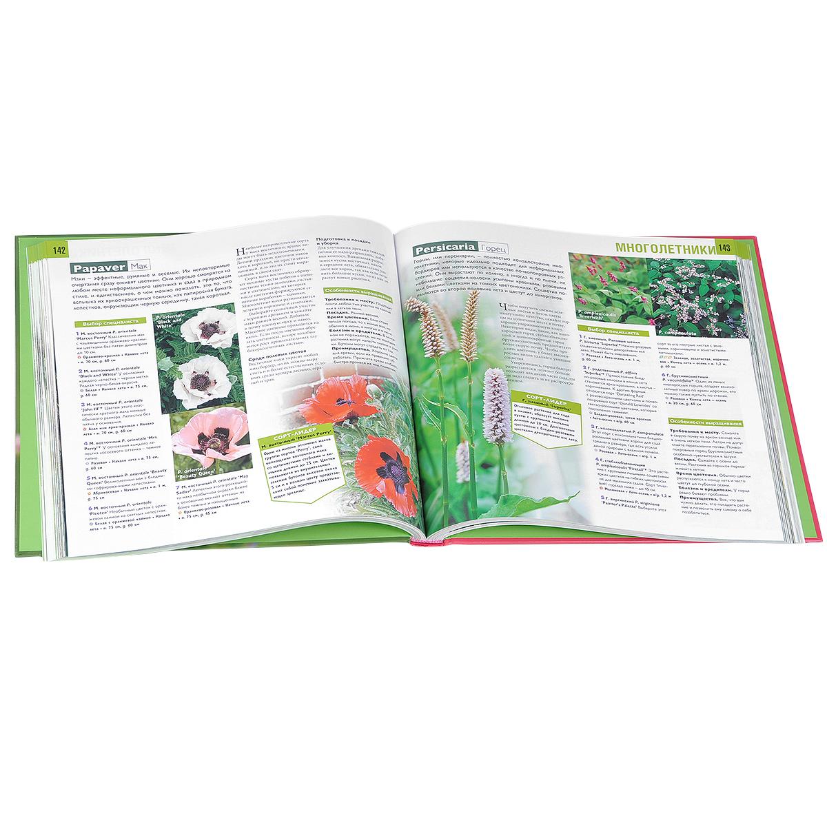 Неприхотливые растения для вашего сада