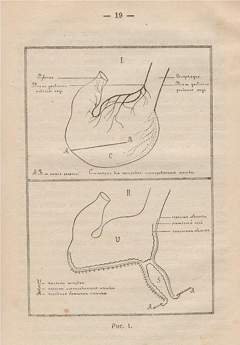 Лекции о работе главных пищеварительных желез