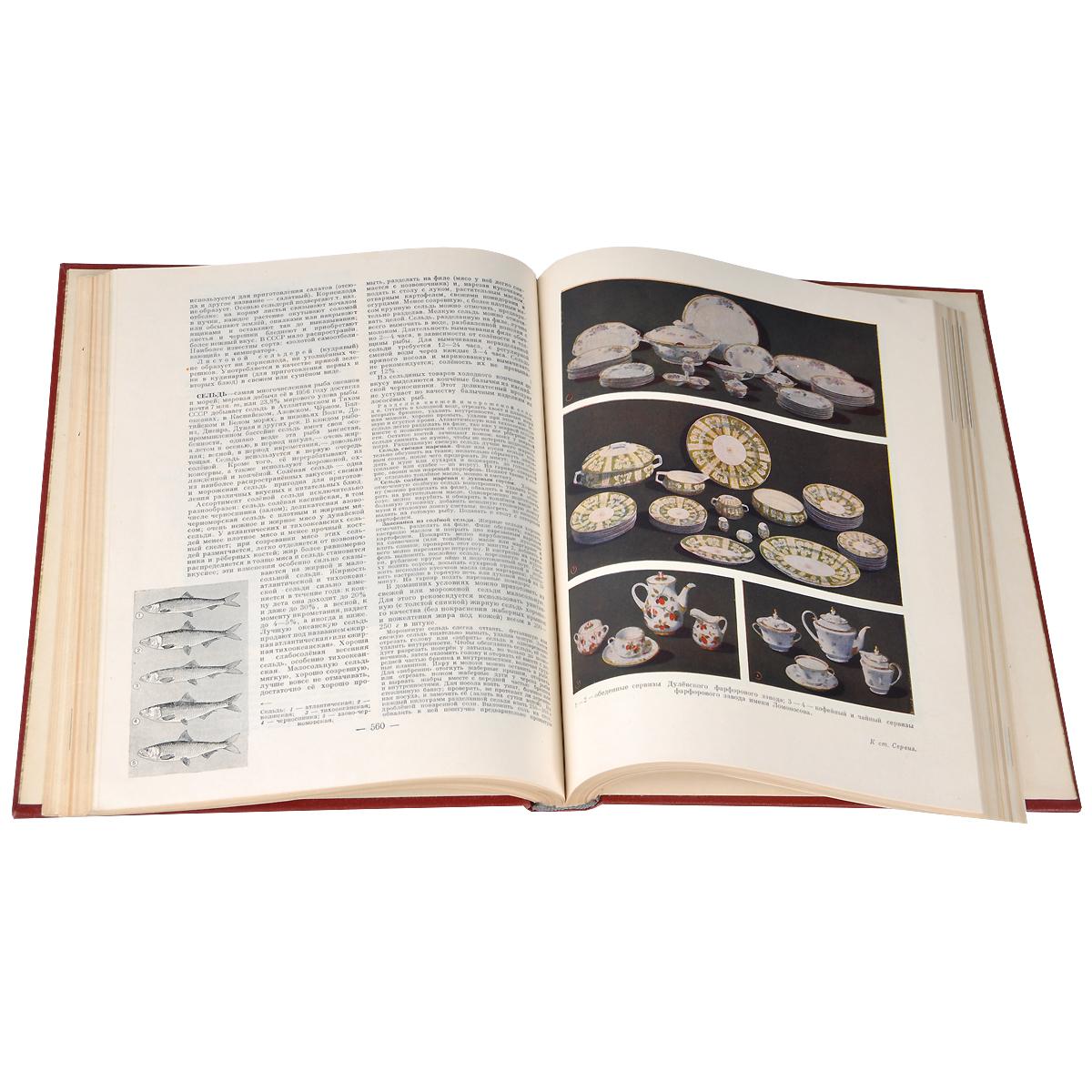 Краткая энциклопедия домашнего хозяйства. В 2 томах (комплект)