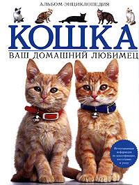 Кошка. Ваш домашний любимец