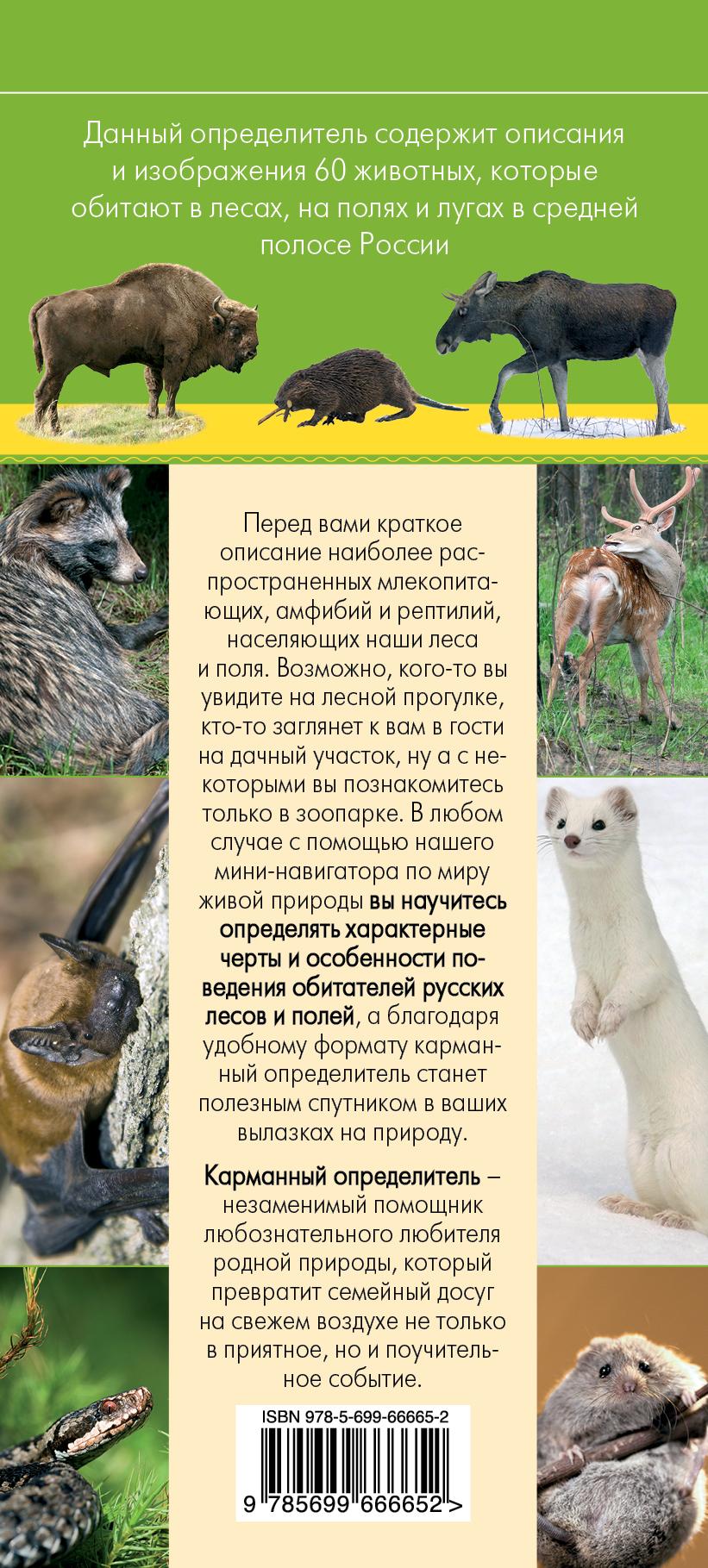 Животные. Определитель животных русских лесов и полей