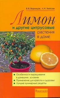 Лимоны и другие цитрусовые растения в доме