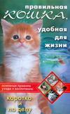 Правильная кошка, удобная для жизни. Основные правила ухода и воспитания. Коротко и по делу