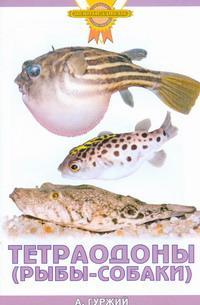 Тетраодоны (рыбы-собаки)