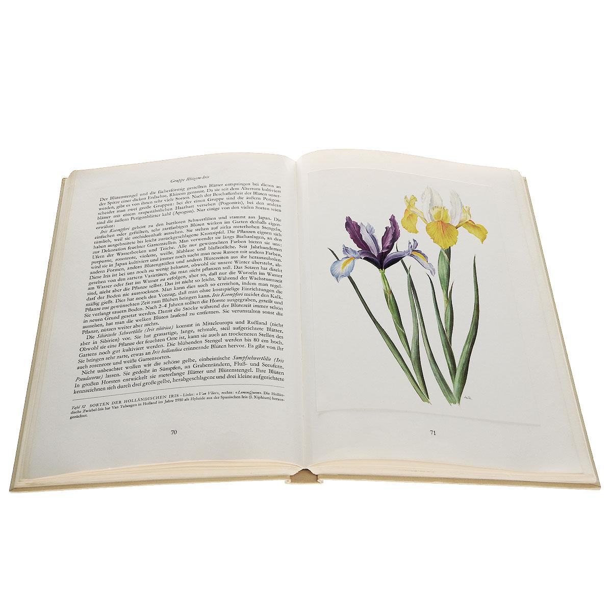 Wunderwelt der Gartenblumen: Band 1: Zwiebel- und Knollenpelanzen