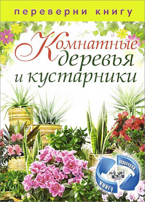 Цветы на вашем участке. Комнатные деревья и кустарники