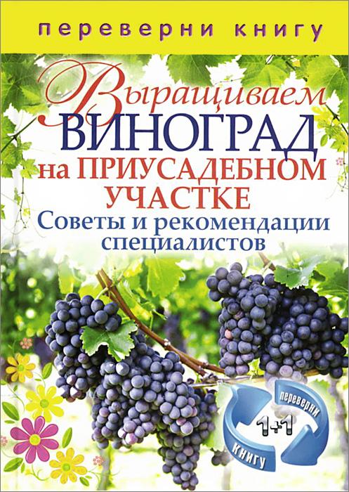 Выращиваем овощи в теплицах и парниках. Выращиваем виноград на приусадебном участке
