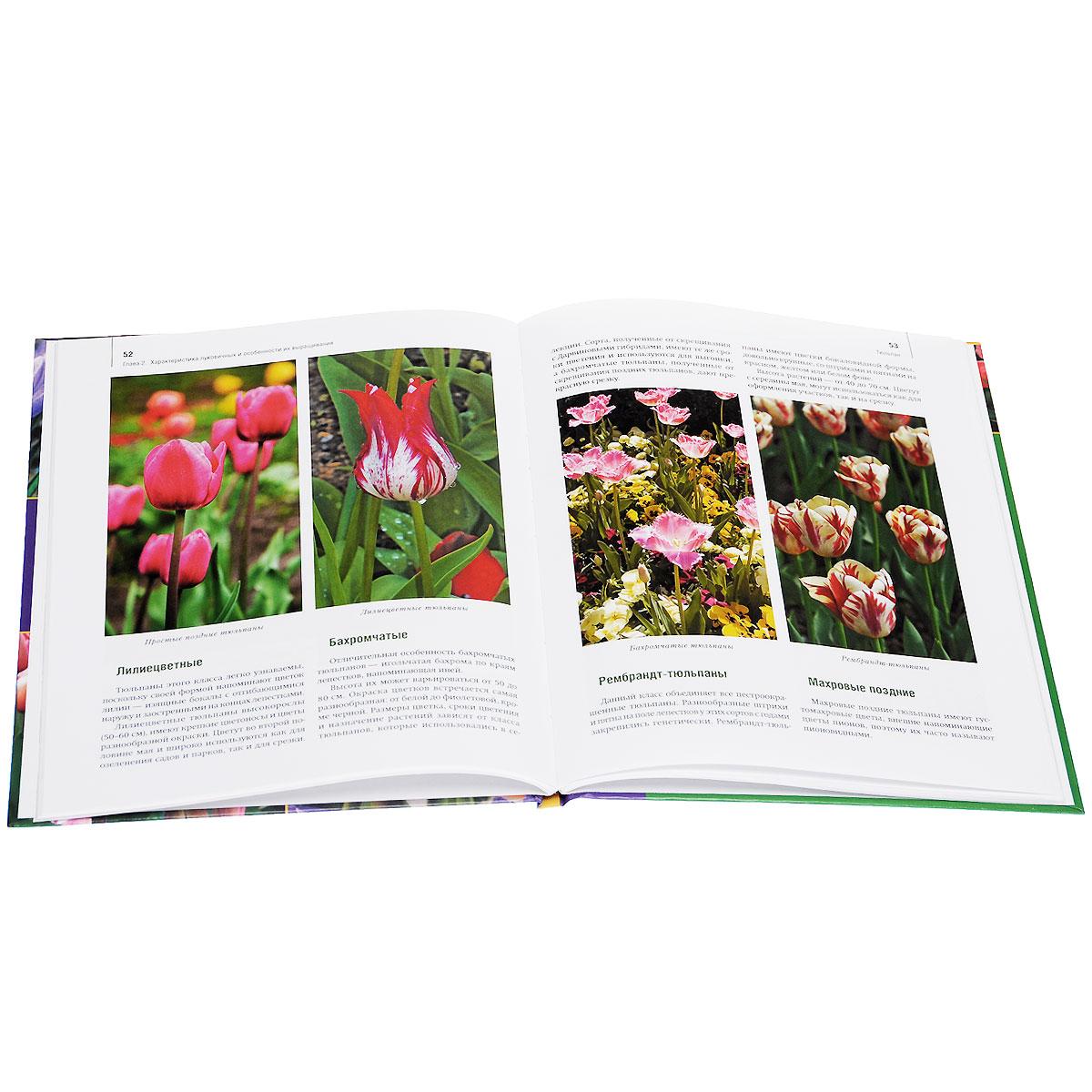 Луковичные цветы. Выбираем, выращиваем, наслаждаемся. Узамбарские фиалки. Выбираем, ухаживаем, наслаждаемся (комплект из 2 книг)