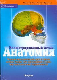 Анатомия. Иллюстрированный атлас