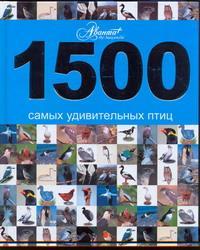 1500 ����� ������������ ����