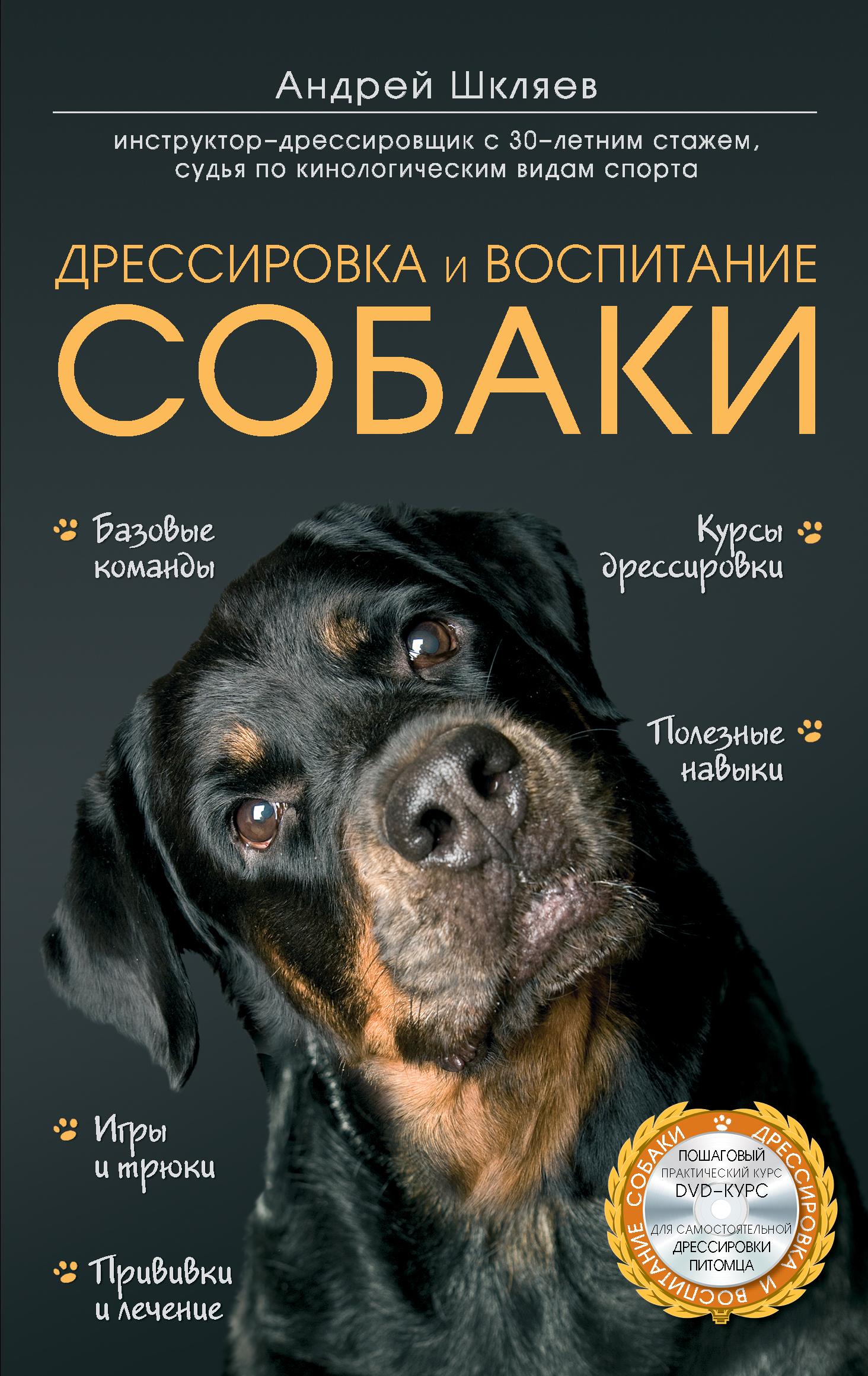 Дрессировка и воспитание собаки (+ DVD-ROM)