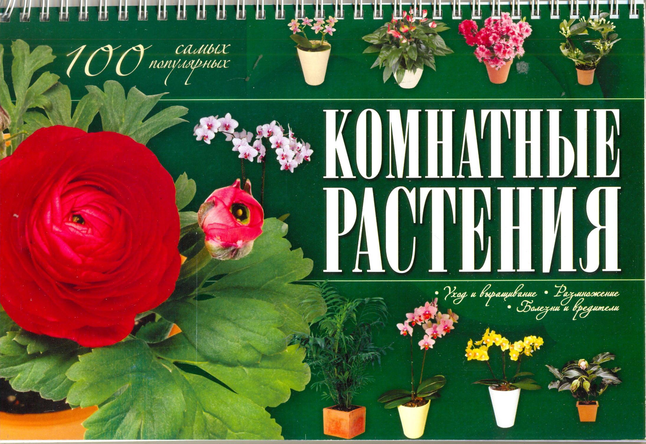 Комнатные растения. 100 самых популярных. Уход и выращивание, размножение, болезни и вредители