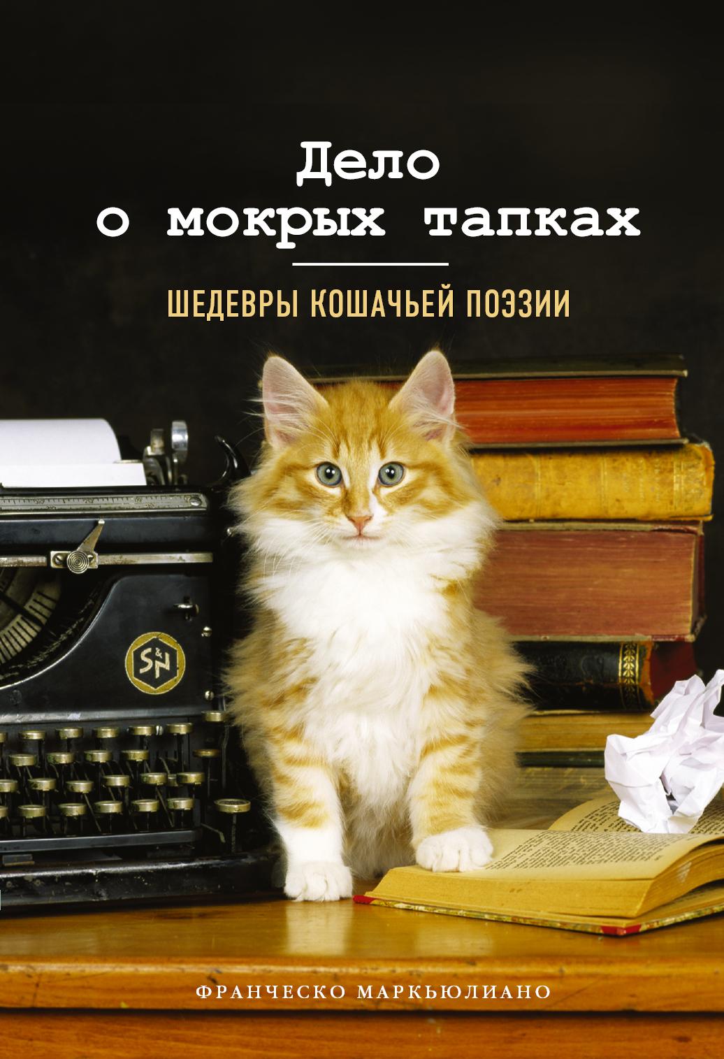 Дело о мокрых тапках. Шедевры кошачьей поэзии