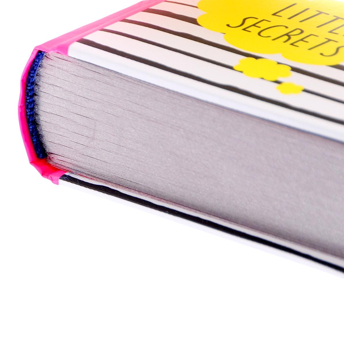My №1 Diary: Big Plans: Little Secrets