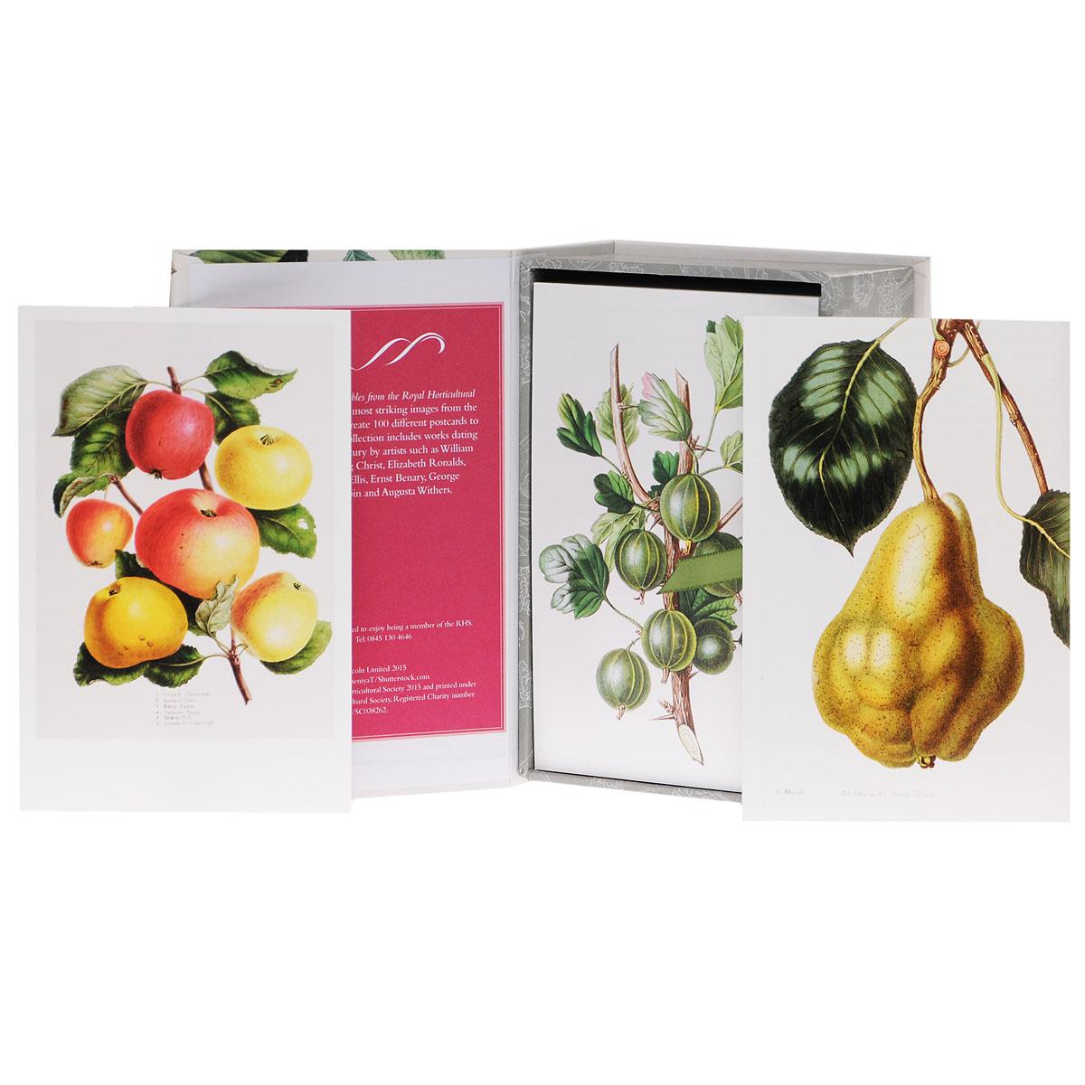 100 Fruit & Vegetables: 100 Postcards