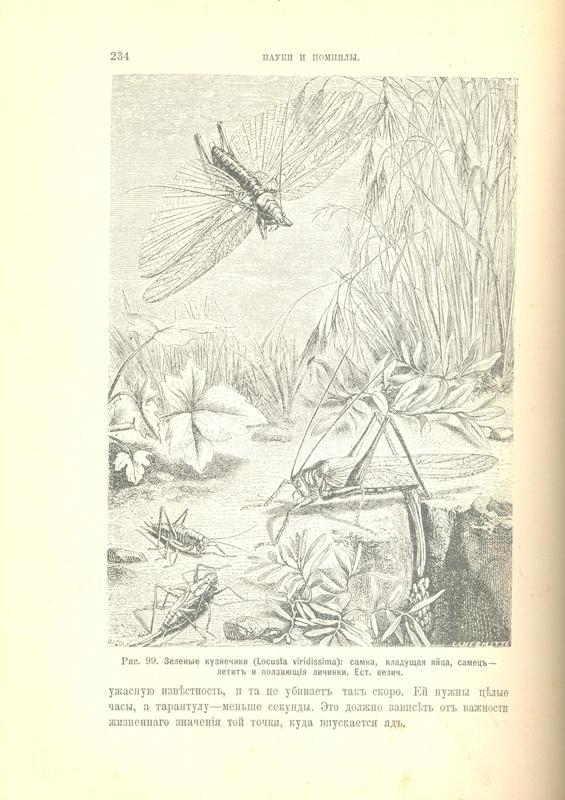 Инстинкт и нравы насекомых. Из энтомологических воспоминаний Фабра. Том первый
