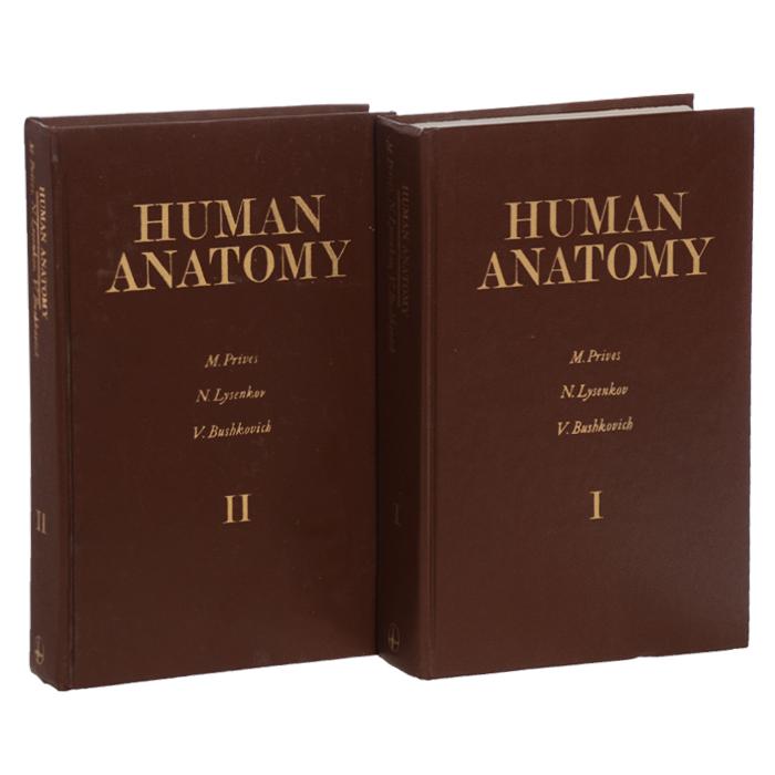Human Anatomy (�������� �� 2 ����)