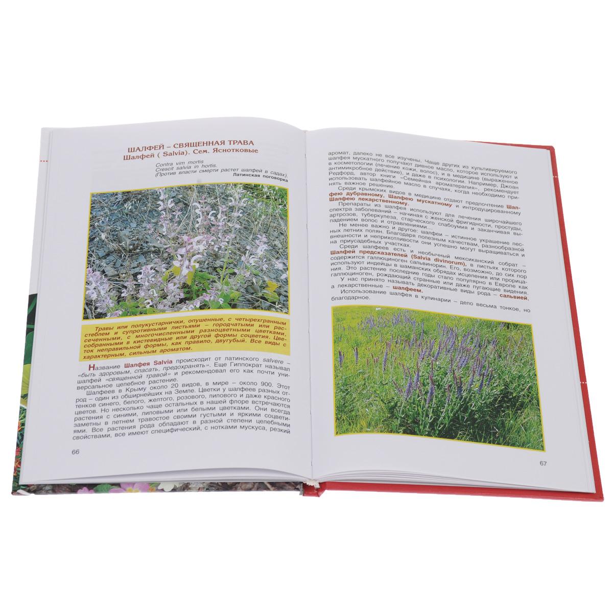 Подножный корм, или Удивительные истории о съедобных растениях