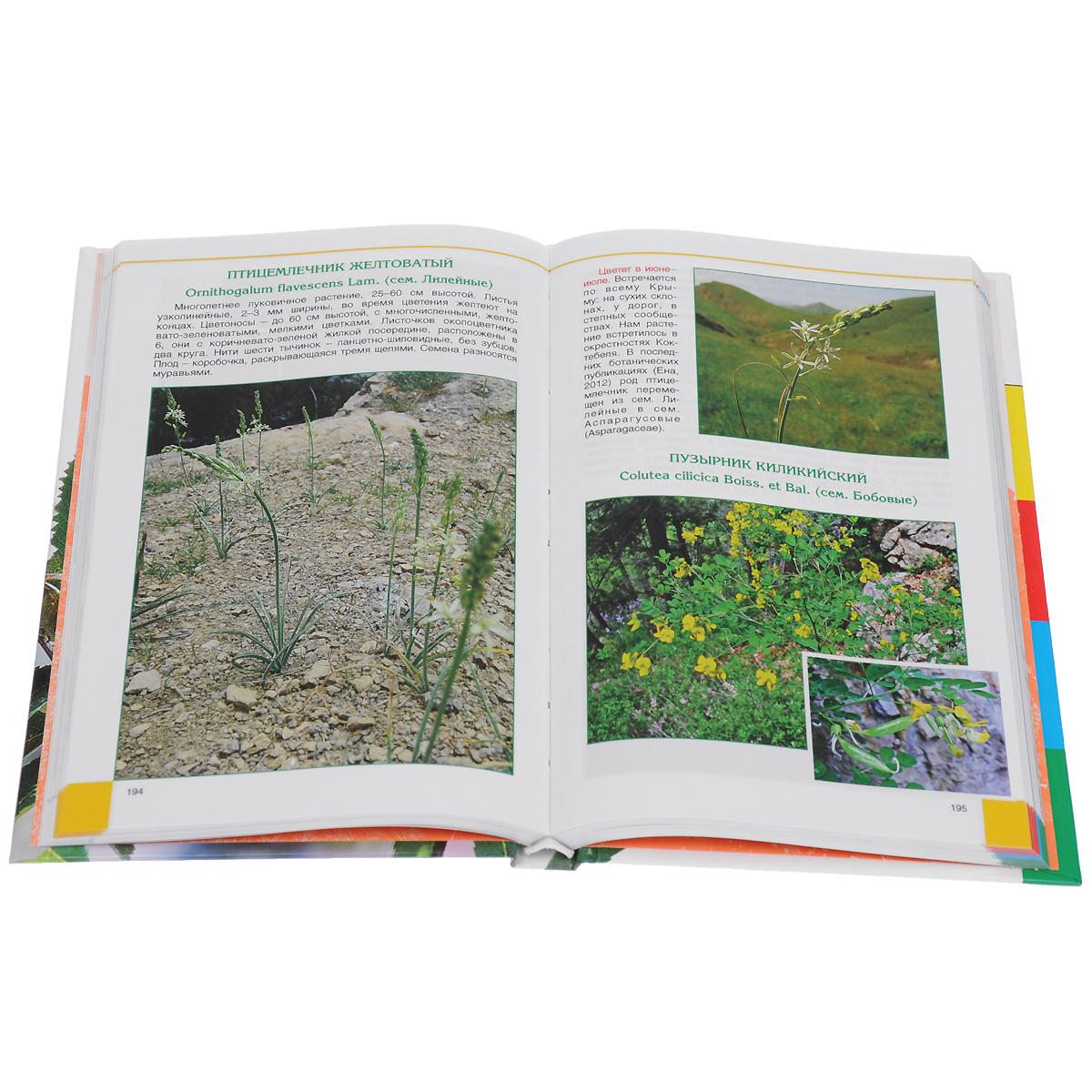 Цветной атлас растений Крыма. Книга 2
