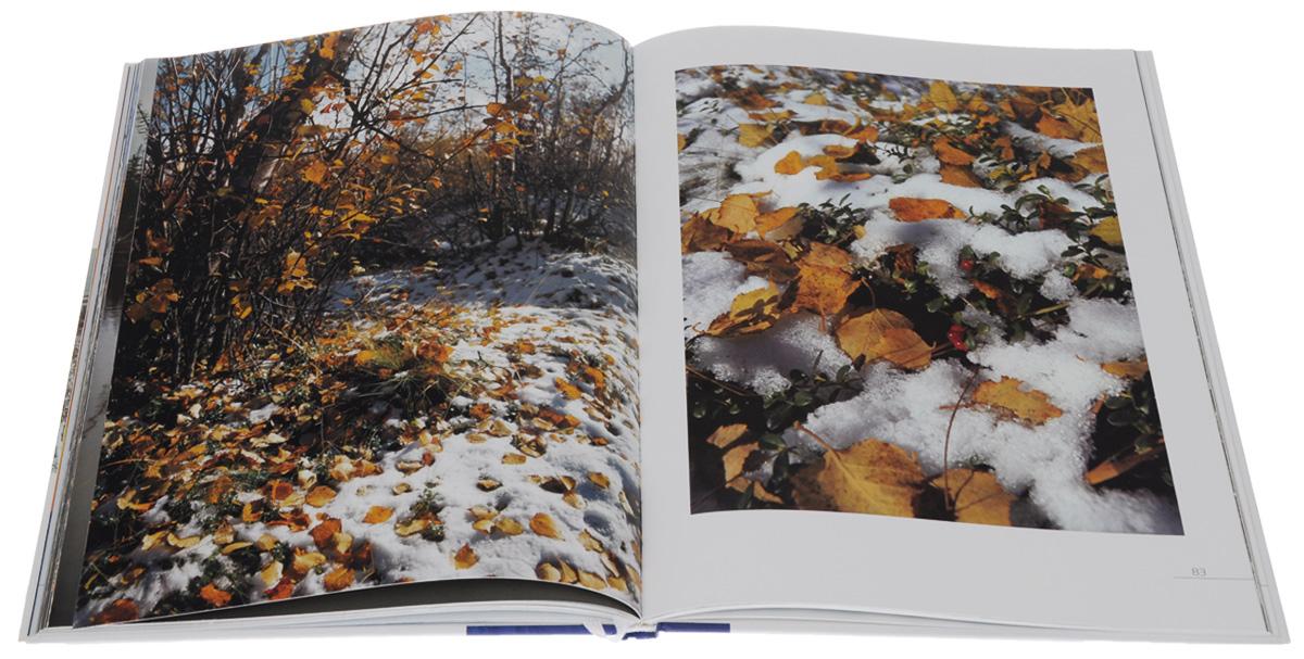 Безмолвие. Фотоэтюды природы Ямала