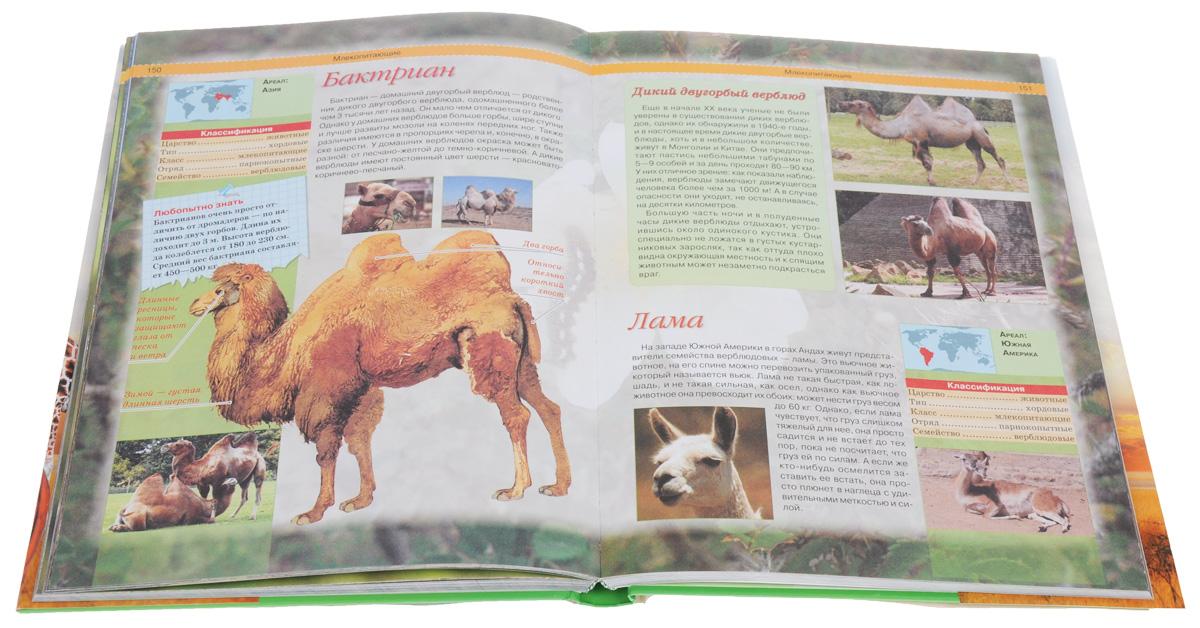 Животные. Суперэнциклопедия для умных и любознательных