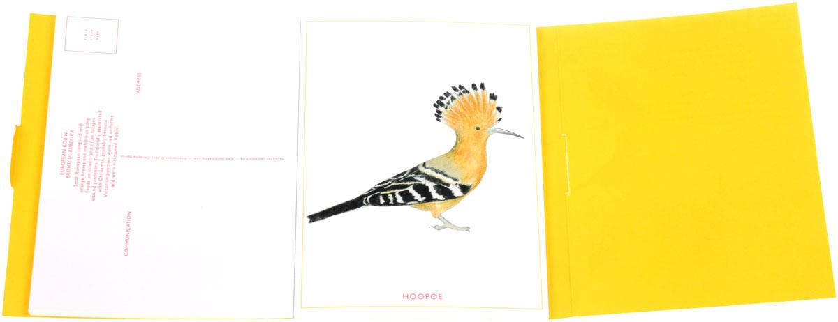 Bird Postcards (набор из 21 открытки)