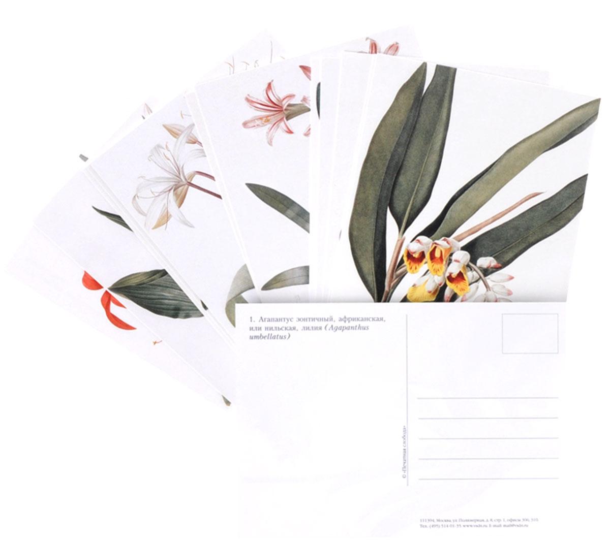 Цветы (набор из 15 открыток)
