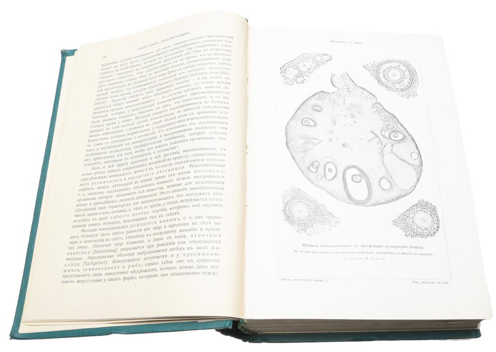 Жизнь животных (комплект из 7 книг)