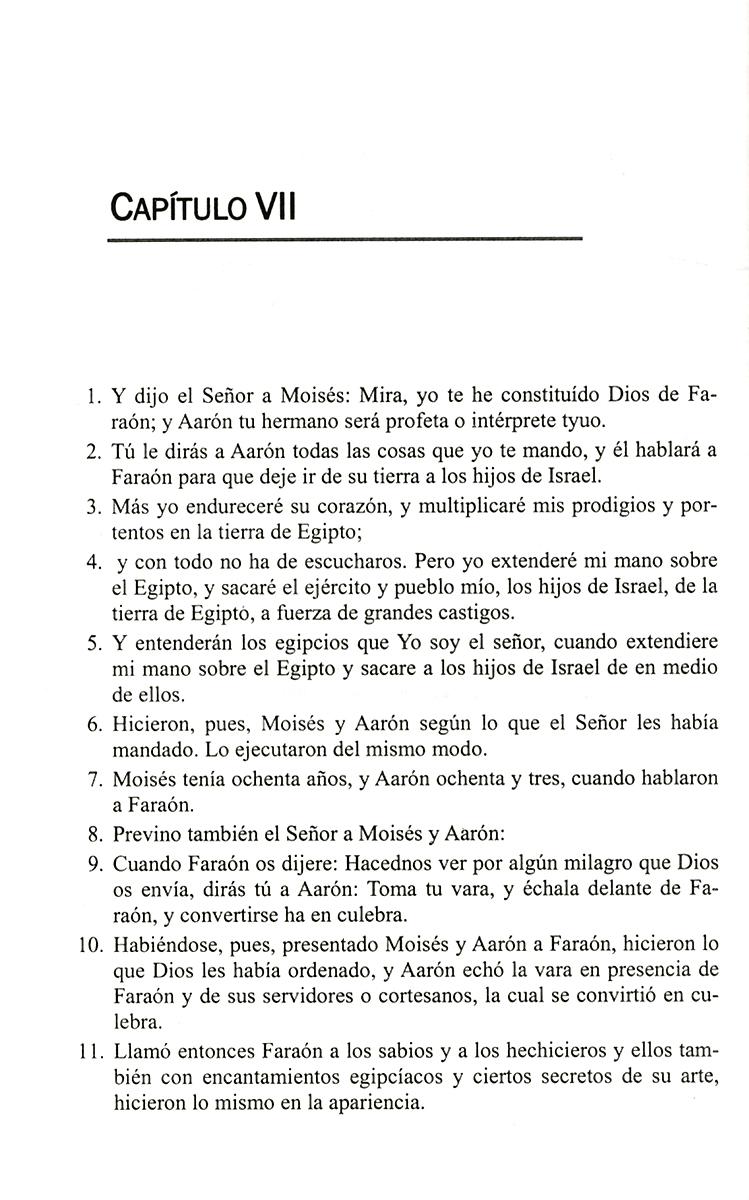 ��������� ���� ����� ������. ����� / Perfeccionc su espanol leyendo la Biblia (para rusohablantes): Exodo