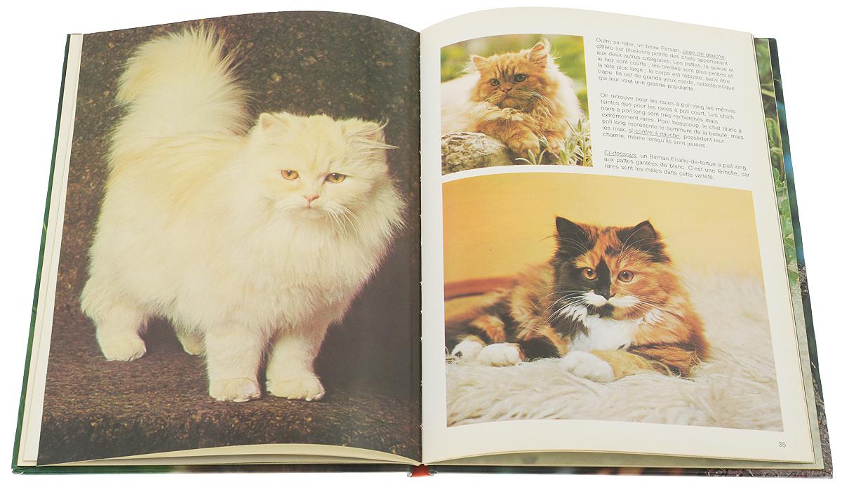 Les Chats. ����������