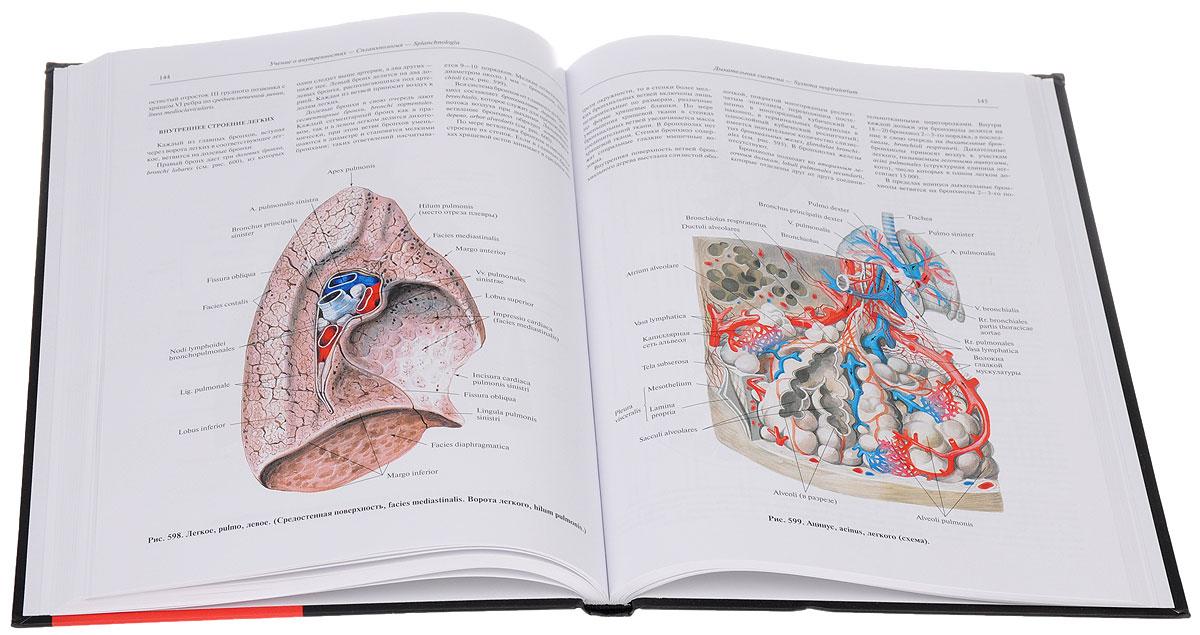 Атлас анатомии в 4-х томах т.2. изд. 7-е перераб.