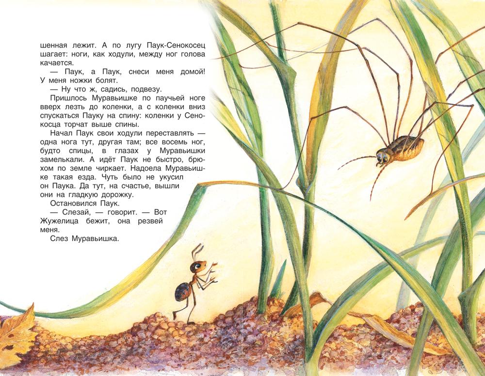 Как муравьишка домой спешил (ДБ)