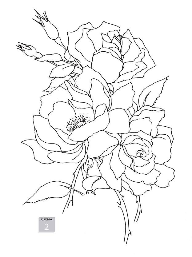 Нарисуй цветы акварелью по схемам