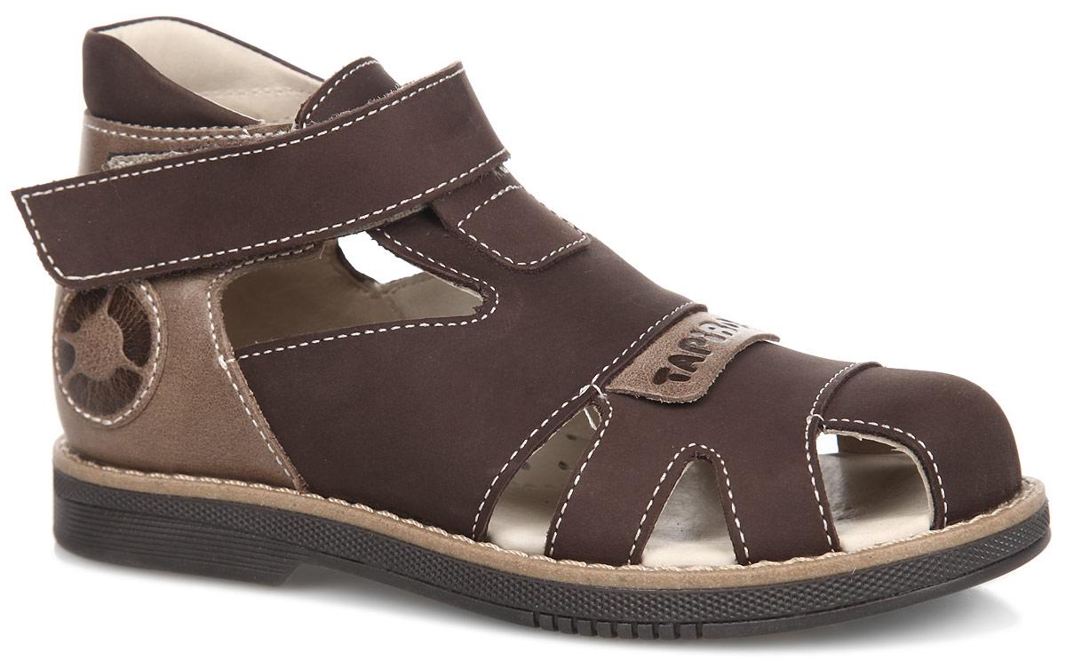 FT-26002.15-OL13O.01Стильные сандалии от TapiBoo придутся по душе вашему мальчику. Модель, выполненная из натуральной кожи и нубука, оформлена прострочкой вдоль ранта, сбоку - фирменной нашивкой. Внутренняя поверхность из натуральной кожи гарантирует комфорт при движении. Анатомическая стелька из натуральной кожи с супинатором обеспечивает правильное формирование стопы. Жесткий фиксирующий задник с удлиненным крылом надежно стабилизирует голеностопный сустав во время ходьбы. Застегивается модель на ремешок с липучкой. Упругая подошва, имеющая перекат, позволяет повторять естественное движение стопы при ходьбе для правильного распределения нагрузки на опорно-двигательный аппарат ребенка. Ортопедический каблук Томаса укрепляет подошву под средней частью стопы и препятствует ее заваливанию внутрь. Рельефный рисунок подошвы обеспечивает сцепление с любыми поверхностями. Такие сандалии станут незаменимыми в гардеробе вашего ребенка.