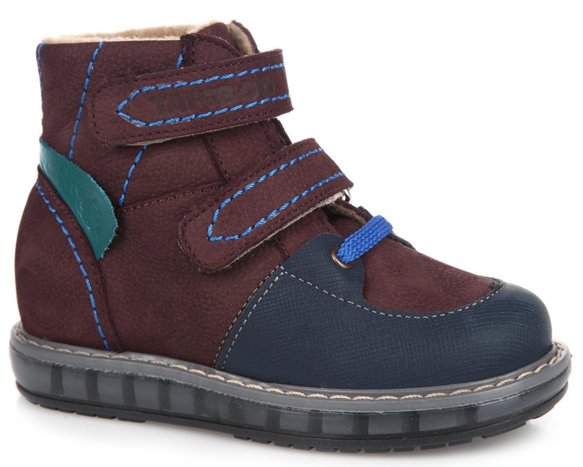 FT-23003.15-OL06O.02Стильные детские ботинки TapiBoo приведут в восторг вашего малыша. Модель выполнена из комбинации натурального нубука и натуральной кожи и оформлена прострочкой по верху. Подкладка и стелька, изготовленные из мягкого и утепленного синтетического волокна, согреют ножки ребенка от холода и обеспечат уют. Ремешки на застежках-липучках позволяют оптимально подогнать полноту обуви по ноге и гарантируют надежную фиксацию. Подъем дополнен декоративным шнурком и металлическими люверсами. Жесткий фиксирующий задник с удлиненным крылом стабилизирует голеностопный сустав во время ходьбы. Задник декорирован вставкой из натуральной кожи контрастного цвета с символикой бренда. Упругая, умеренно-эластичная подошва, имеющая перекат, который позволяет повторить естественное движение стопы при ходьбе, предназначена для правильного распределения нагрузки на опорно-двигательный аппарат ребенка. Удобные ботинки придутся по душе вашему ребенку!