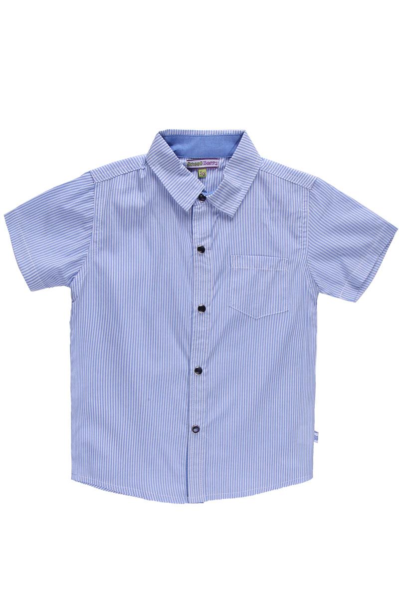 Рубашка для мальчика. 196397196397Стильная рубашка для мальчика Sweet Berry, выполненная из натурального хлопка, сделает образ ребенка интересным и оригинальным. Материал легкий, мягкий и приятный на ощупь, не сковывает движения и позволяет коже дышать, обеспечивая комфорт. Рубашка с отложным воротником и короткими рукавами застегивается на кнопки по всей длине. На груди модели расположен накладной кармашек. Изделие оформлено принтом в мелкую полоску. Современный дизайн и расцветка делают эту рубашку модным предметом детской одежды. Обладатель такой рубашки всегда будет в центре внимания!