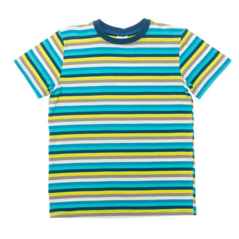 Футболка для мальчика. 161165161165Футболка для мальчика PlayToday идеально подойдет маленькому моднику и станет отличным дополнением к его гардеробу. Изготовленная из эластичного хлопка, она мягкая и приятная на ощупь, не сковывает движения ребенка и позволяет коже дышать, обеспечивая наибольший комфорт. Футболка с круглым вырезом горловины и короткими рукавами не принтованная, а пестровязанная - не потеряет цвет после стирок. Воротник дополнен мягкой трикотажной резинкой. В такой футболке ребенок будет чувствовать себя комфортно, уютно и всегда будет в центре внимания!