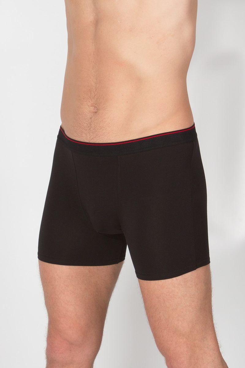 Трусы мужские. 029 FH029 FHШорты мужские из гладкого высокачественного хлопка. Резинка черная с красной полосой и рельефным логотипом бренда.